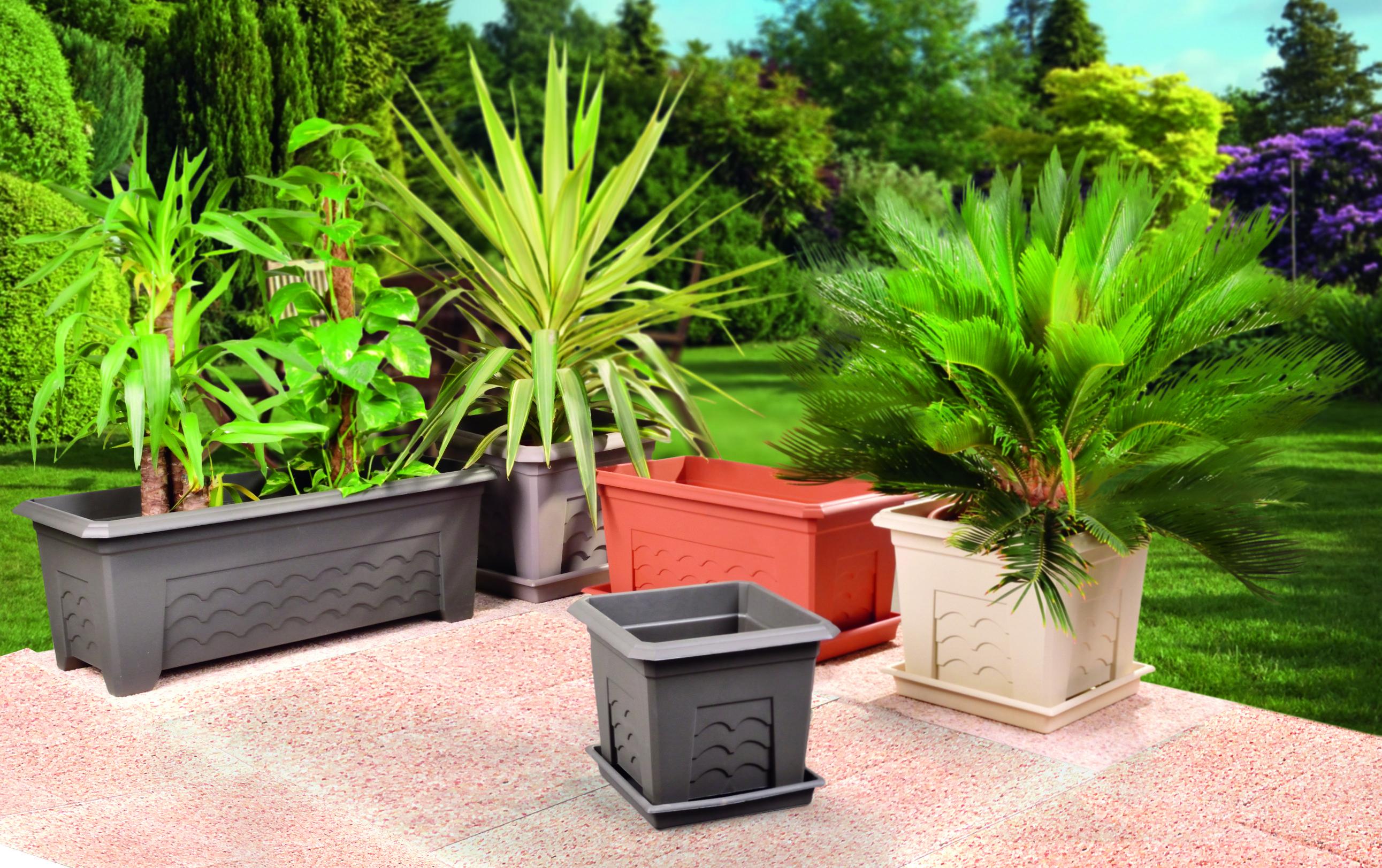 pots et jardini res centrakor mon ext rieur ext rieur decoration et pots. Black Bedroom Furniture Sets. Home Design Ideas