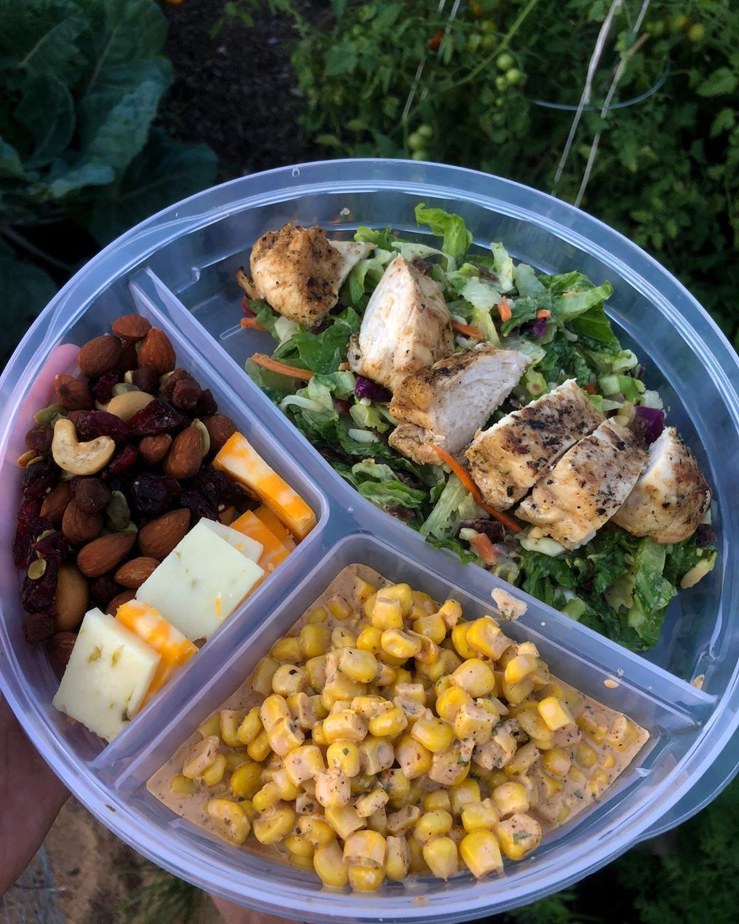 First time ever meal prepping: ✅ My sophomore year of college starts tomorrow so what better way to get ready than to meal prep! This is one of the many meals I prepped (trail mix, southwest avocado salad, grilled chicken, and elote) . . .   #mealprep     #easymealprep     #yum     #health     #fitness     #physicalhealth     #mentalhealth     #wor