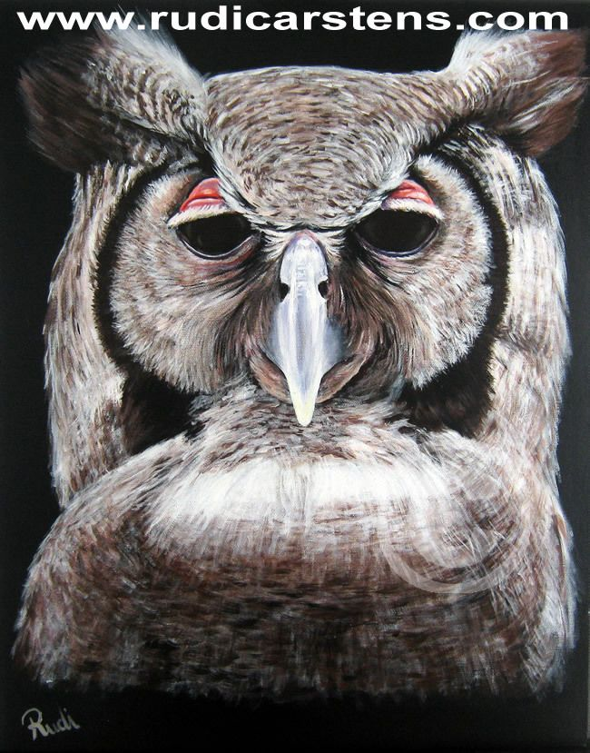 Acrylic painting of an owl by Rudi Carstens