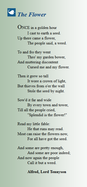 Perfect The Flower Poem By Alfred Lord Tennyson Summary And View Poetry Word Writing Classic Poems Paraphrase Hope I Thing With Feathers