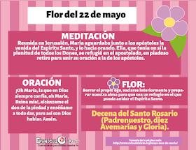 Gifs Y Fondos Paz Enla Tormenta Imagenes De 31 Flores A La Virgen Maria Para El Mes De Mayo Mayo Mes De Maria Abrazo De Dios Virgen Maria