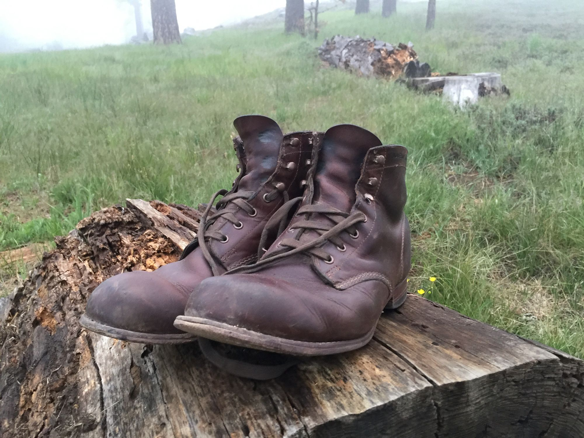 b6659dc3fd7 Well Worn Wolverine 1000 Mile Boots | BootHunter
