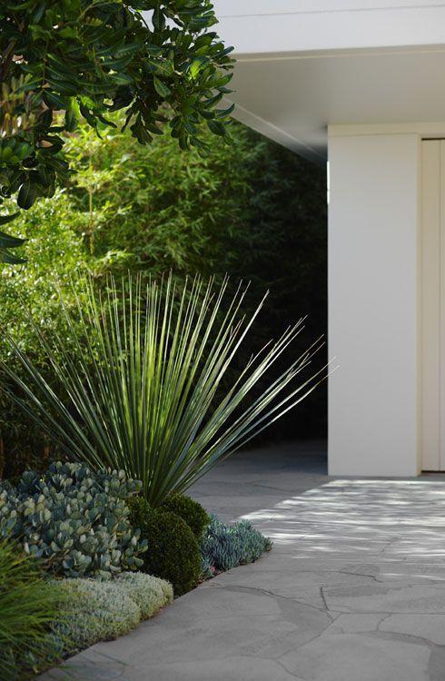 Modern landscaping inspo Asador, Patios y House