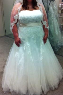 aline beaded tulle plus size wedding dress  david's