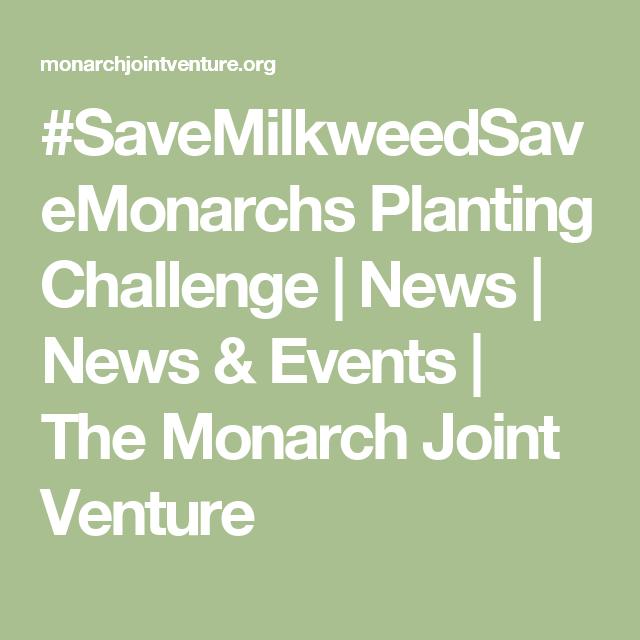 #SaveMilkweedSaveMonarchs Planting Challenge   News   News & Events   The Monarch Joint Venture