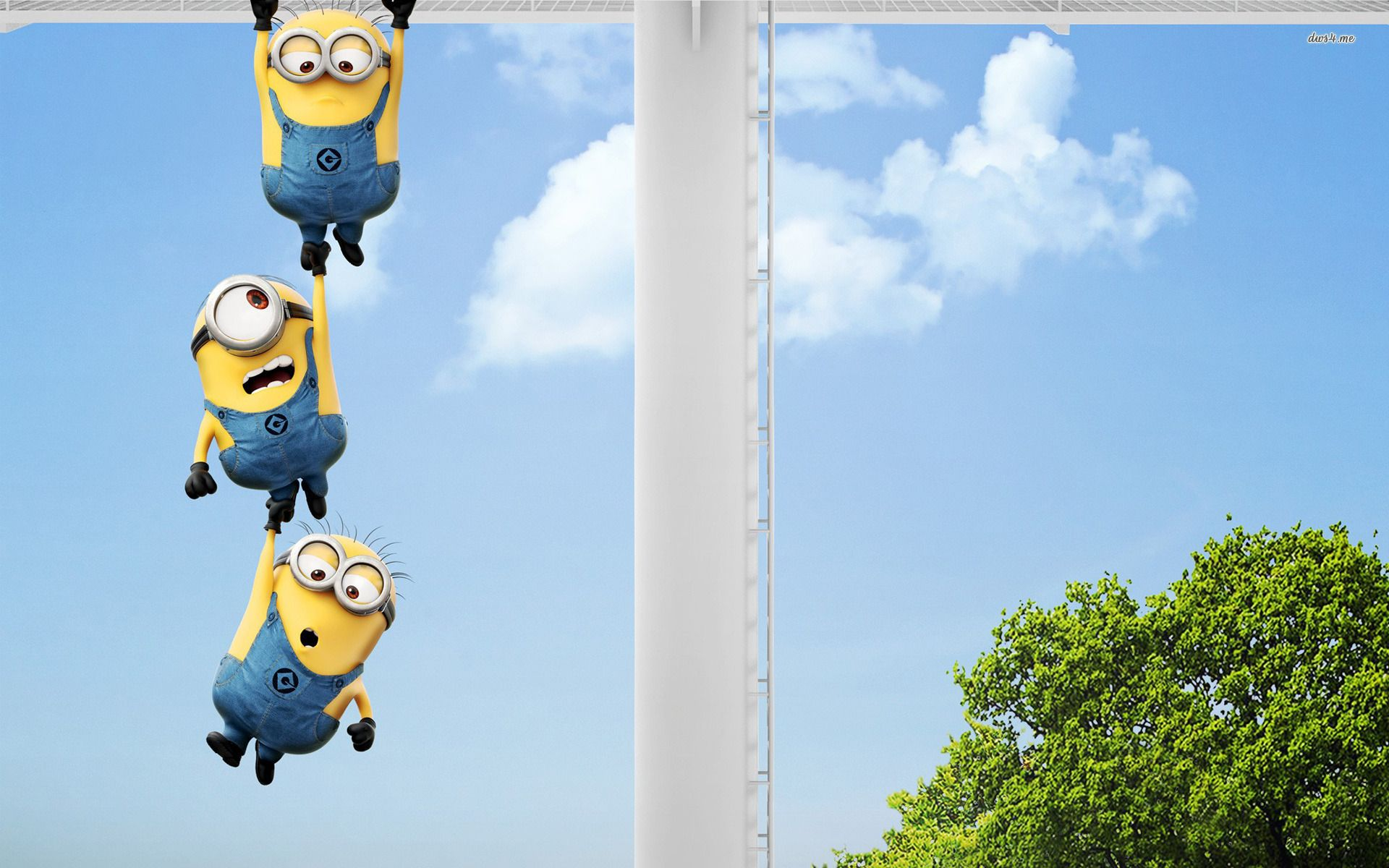 Beautiful Wallpaper High Resolution Minion - fcd23389df2eef22e712eaf2c2476858  Best Photo Reference_619510.jpg