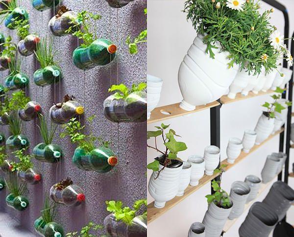 Blog Tapeti | Inspirações para montar uma mini horta em casa