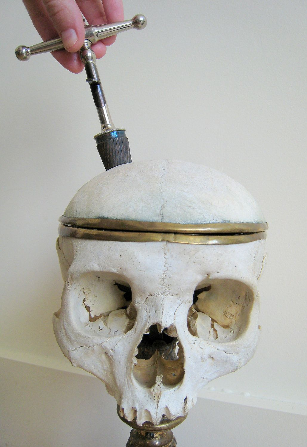 Antique Medical Steel Skull Galt Trephine Trepanning C1900s Medical Vintage Medical Antiques