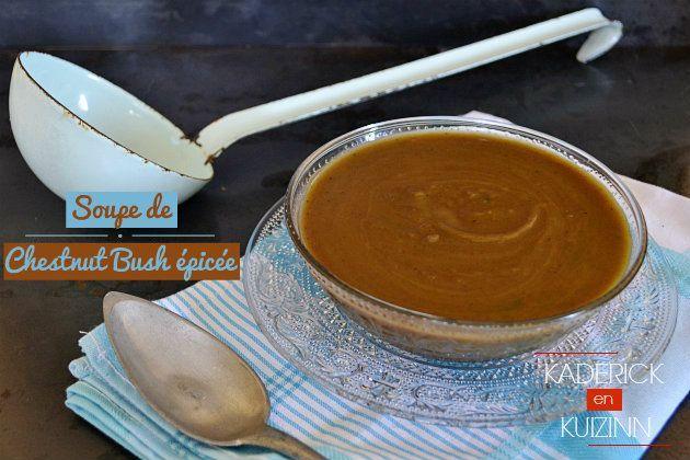 Recette de soupe bio recette de potimarron châtaignier épicé au kadericken ...   - Recettes de saison : Novembre - #bio #châtaignier #épicé #kadericken #novembre #Potimarron #Recette #recettes #saison #Soupe #recettenovembre