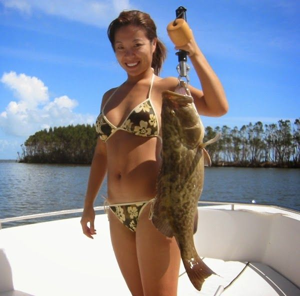 Gulf Grouper Season Open on Viral pictures of the day