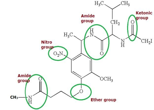 The derivatives of hydrocarbons organic compounds which are – Functional Group Worksheet