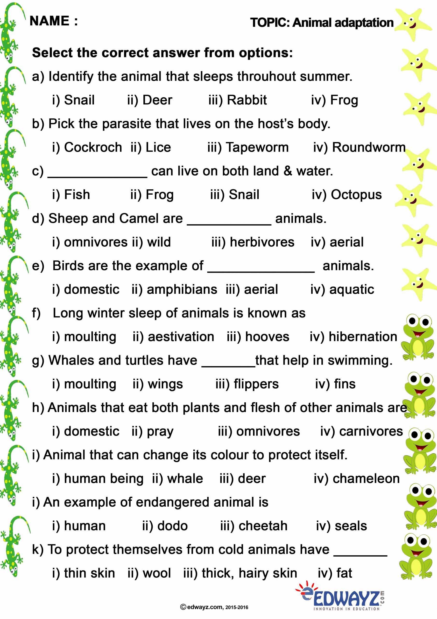 Pin On English Worksheets For Kindergarten
