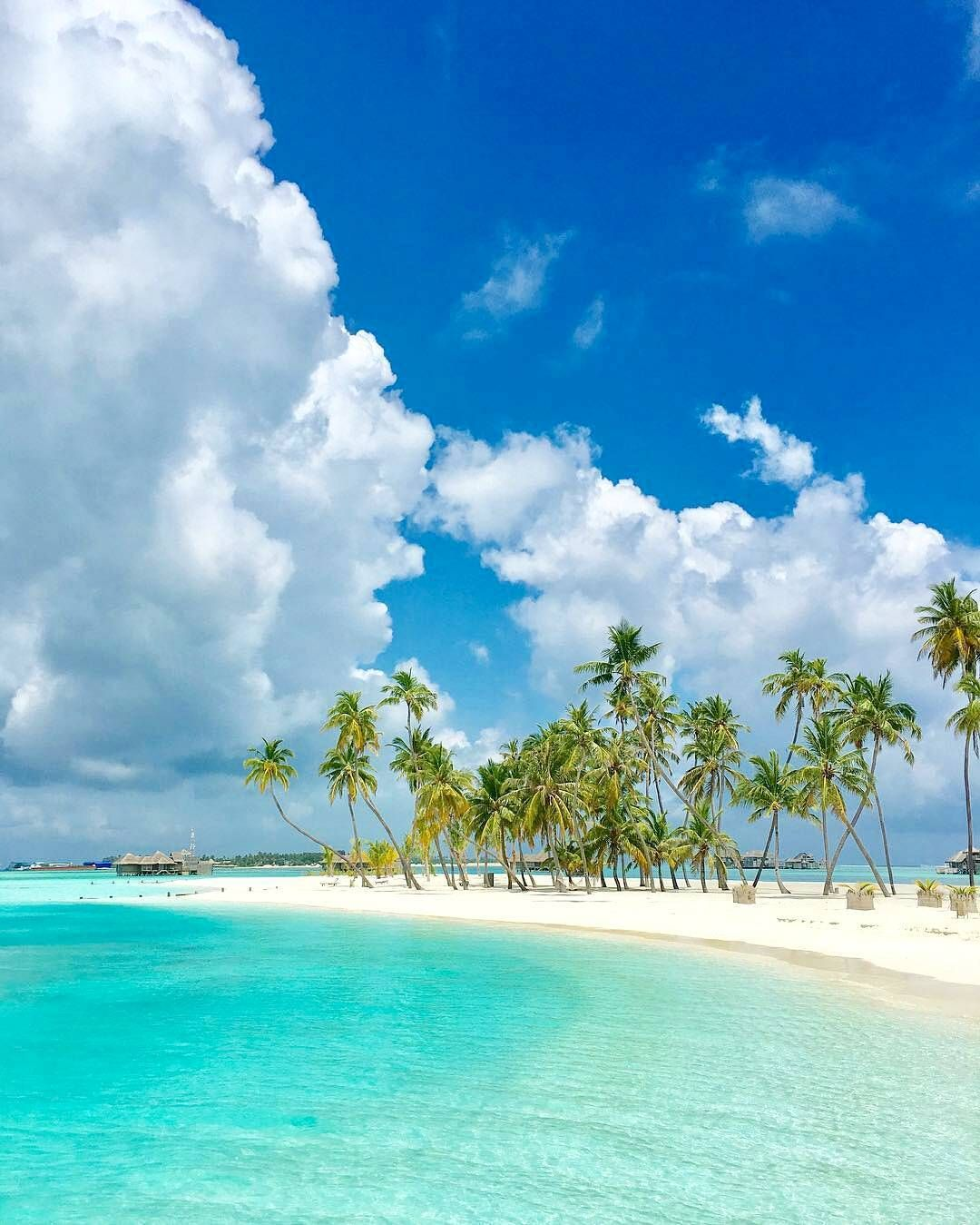 Tropical Beach And Peaceful Ocean: Lovely, Beautiful, Peaceful, Ocean, Sea, And Sky, Blue