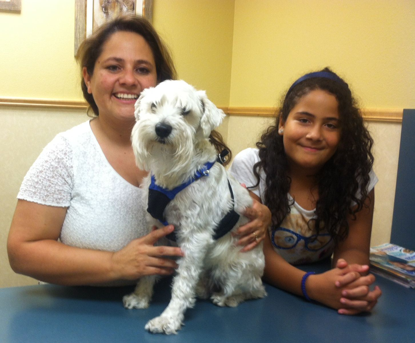 Pin by 1st Pet Veterinary Centers on 1st Pet Patients