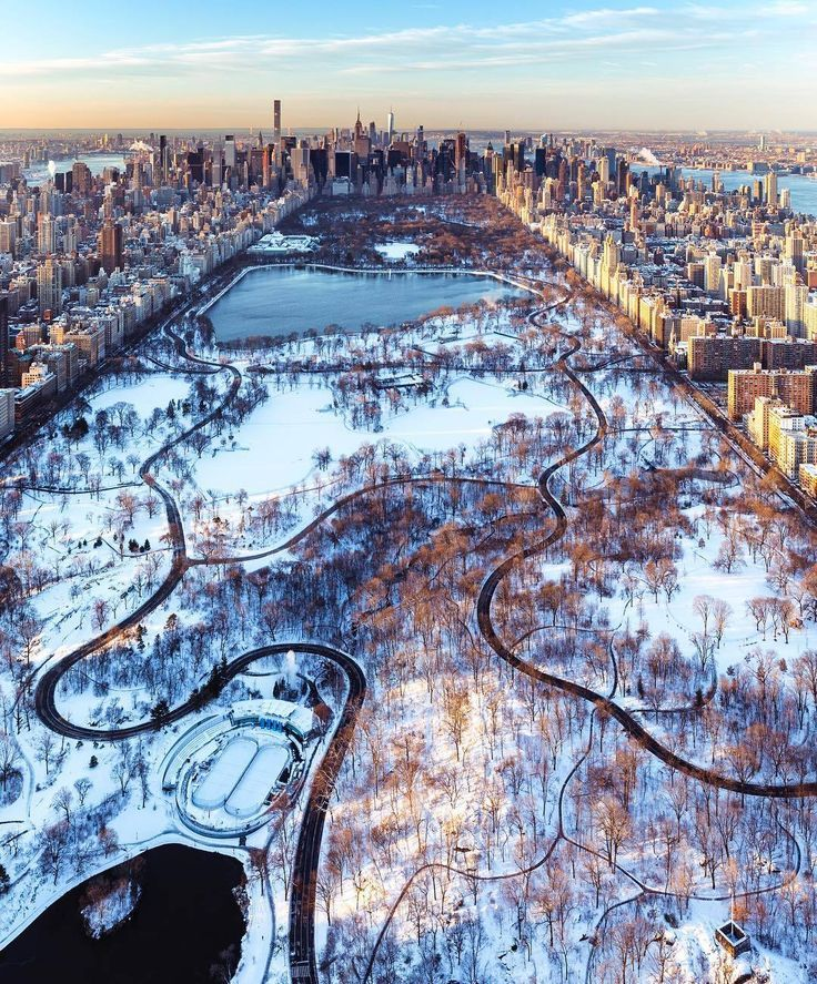 Central Park during an ice age by Craig Beds