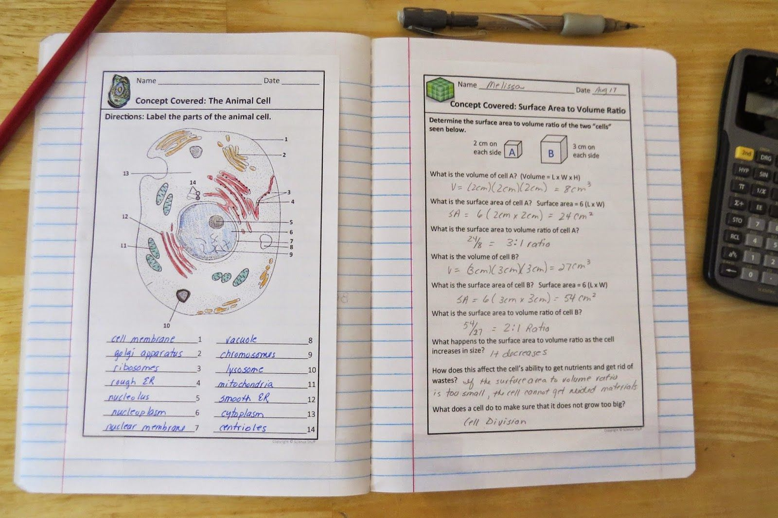 Biology Interactive Notebooks