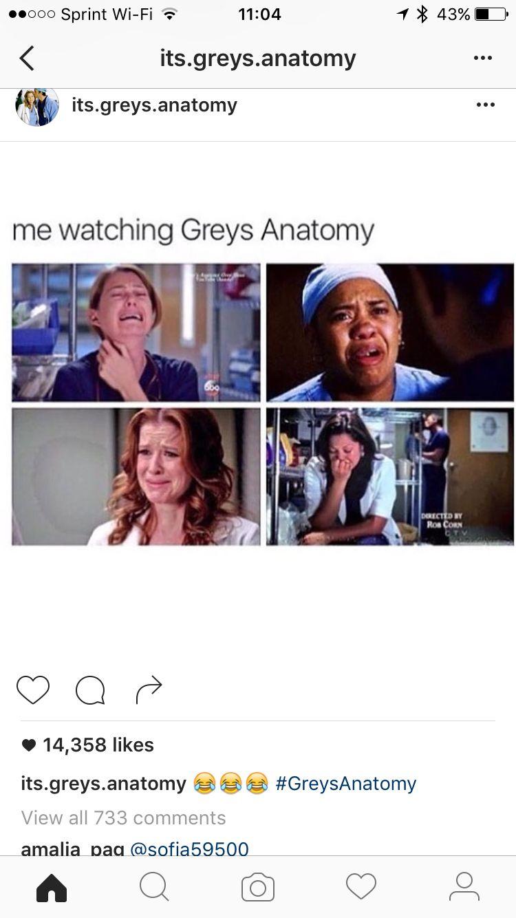 Pin by Amelia Hoffbeck on Netflix ♥ | Pinterest | Anatomy, Grays ...