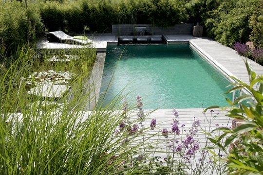 Schoner Wohnen Mit Schwimmteich Schwimmbad De In 2020 Schwimmteich Naturschwimmbecken Hinterhof Pool Landschaftsbau