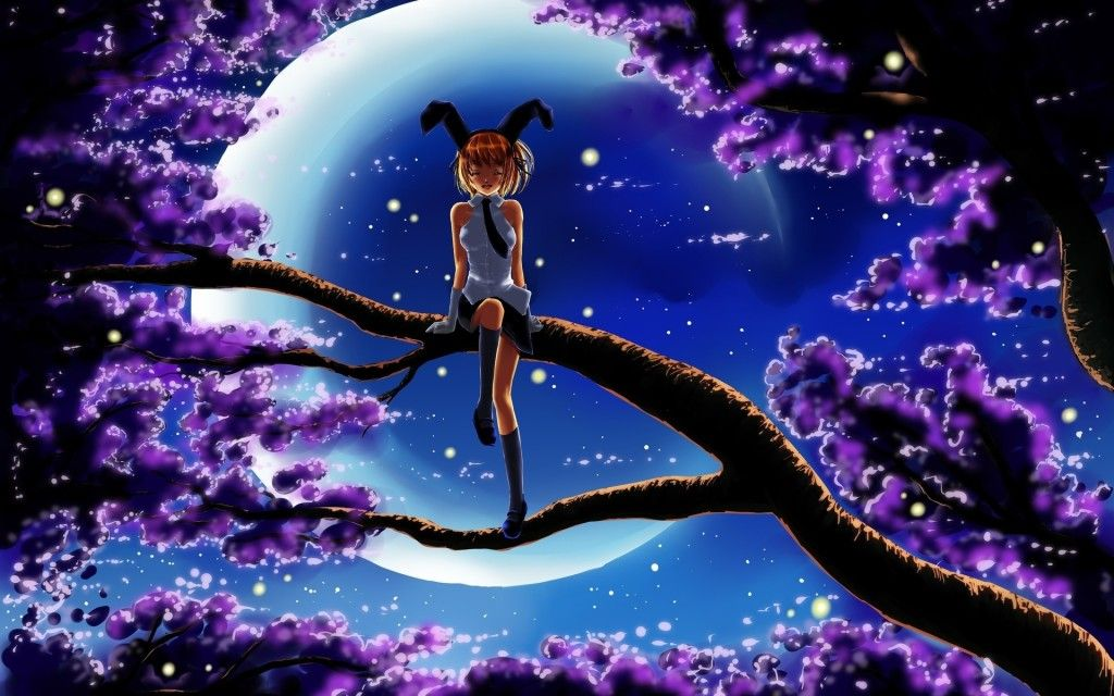 Forest At Night With Moon File Name Anime Night Forest Moon