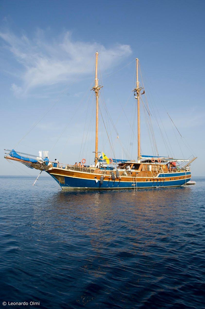MSY SAN MARCO SUDAN @Albatros Top Boat   MAGNIFICO SUDAN SOLO A ...