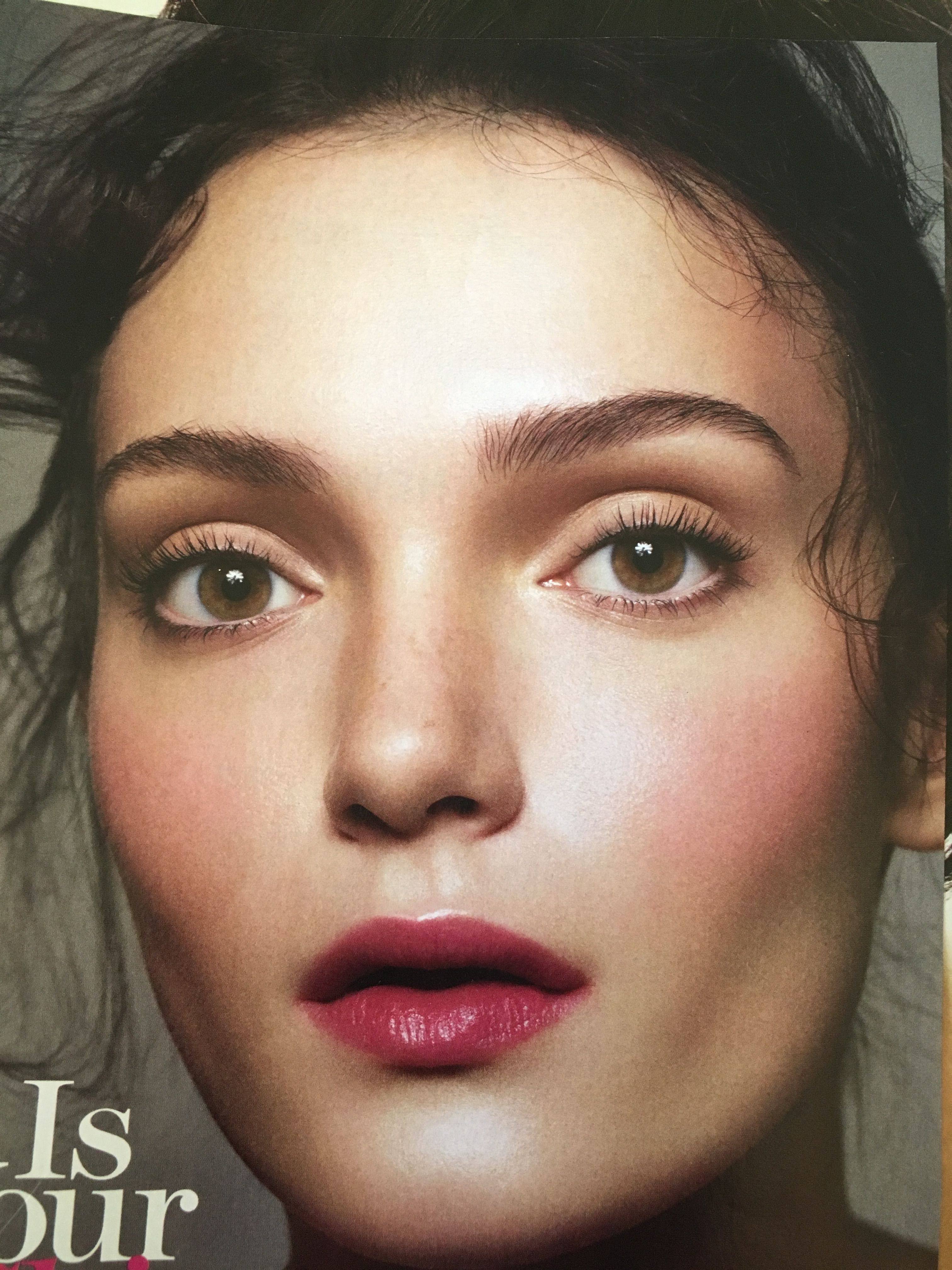 Rosy Cheeks Glow Brows Awesome Skin Lip Stain Editorial Makeup Old Makeup Makeup Books