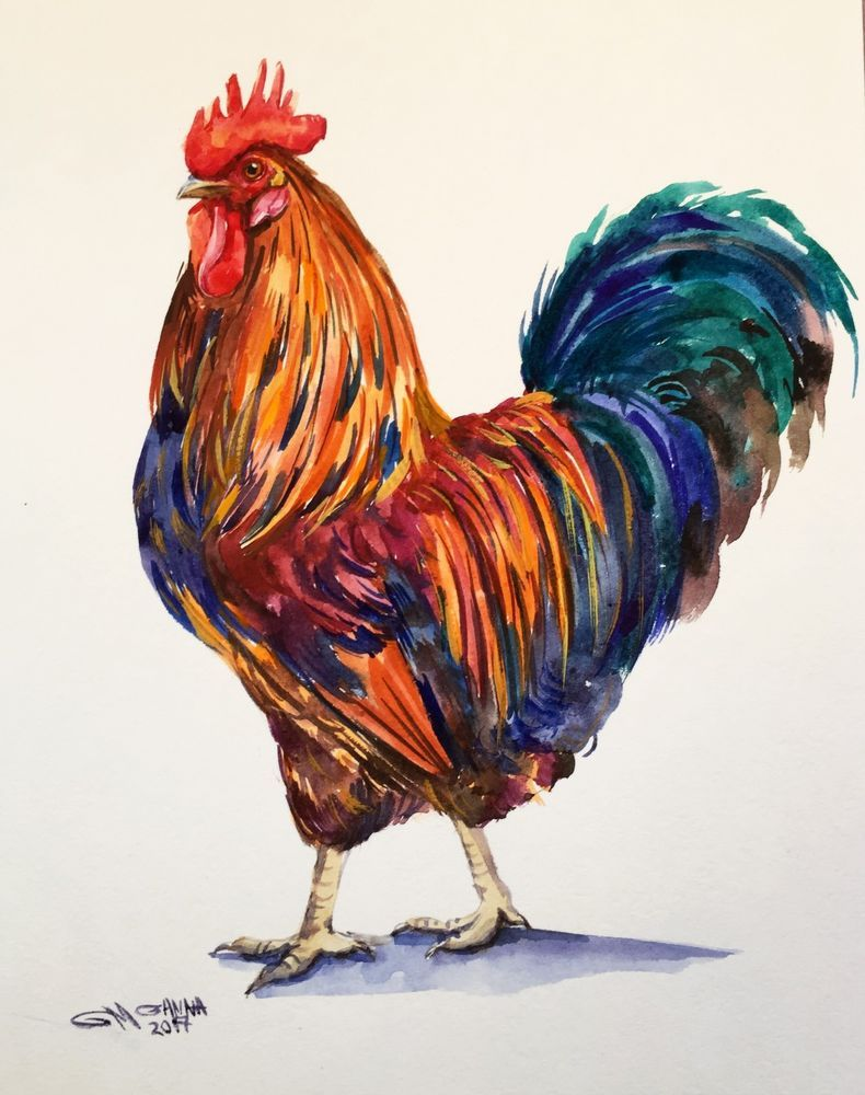 Chicken Painting : chicken, painting, COLORFUL, ROOSTER,, BIRD,, ORIGINAL, WATERCOLOR, PAINTING, #Impressionism, Rooster, Painting,, Watercolor, Rooster,