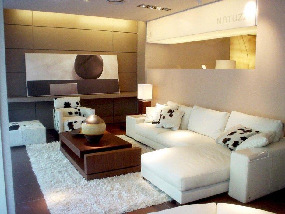 contemporary real living room design idea feature white