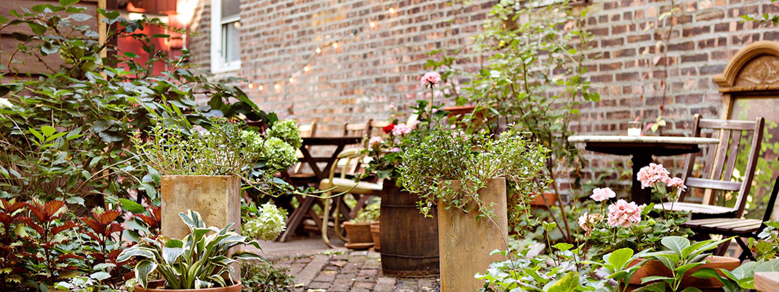 Milk & Roses Greenpoint New York Roses restaurant