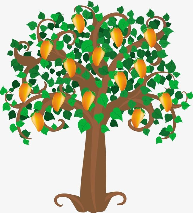 Mango Tree Mango Clipart Tree Clipart Cartoon Png And Vector With Transparent Background For Free Download Tree Clipart Mango Tree Tree Drawing