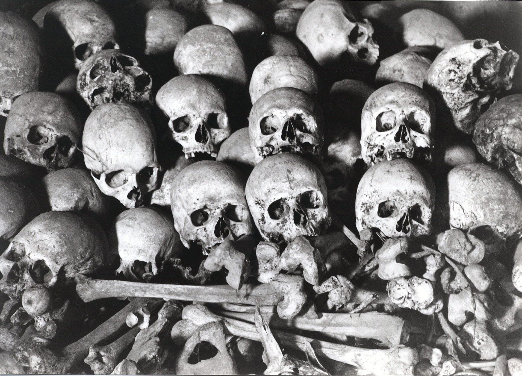 http www skullwallpaper org wp content uploads wallpapers skulls