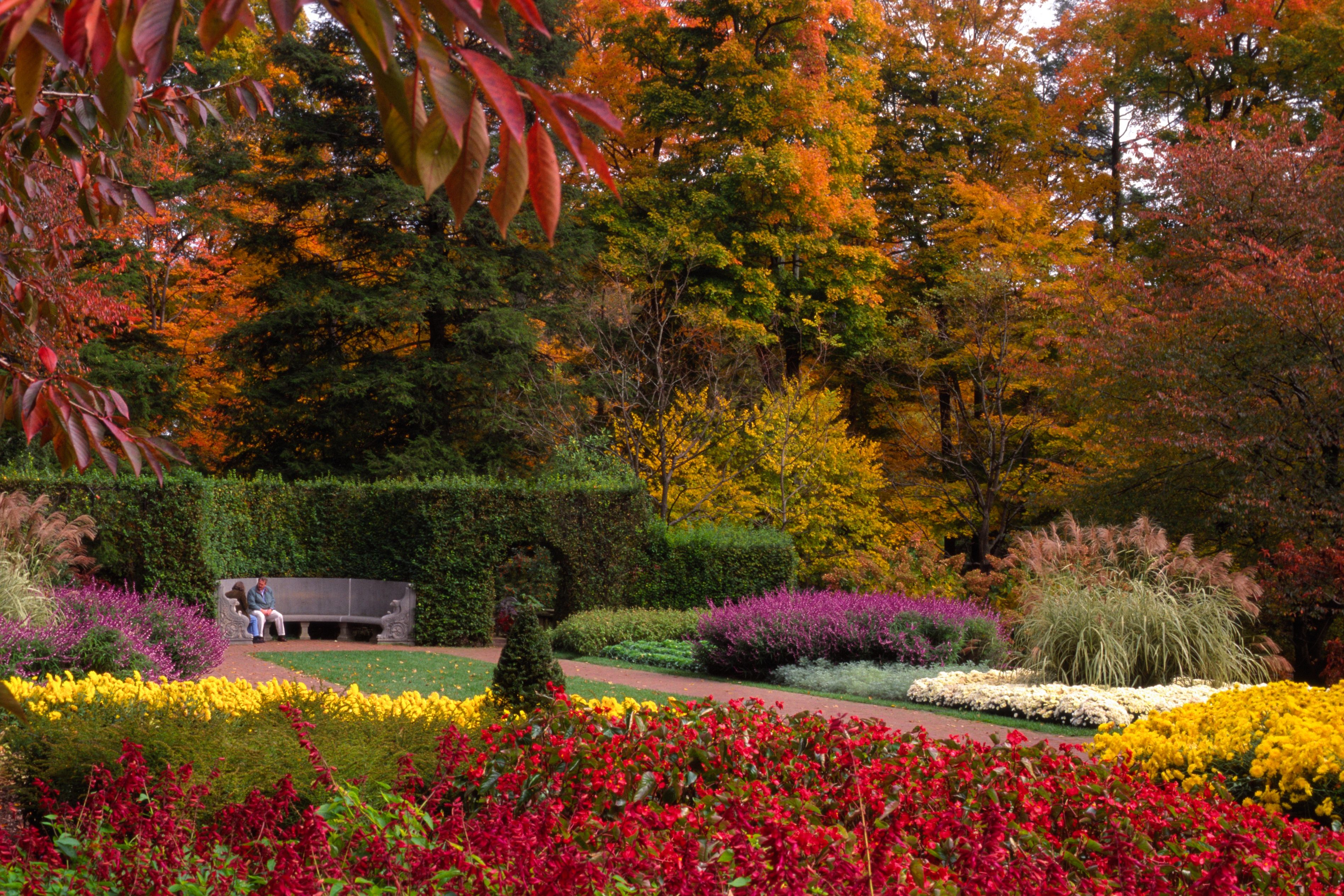 A Moment on the Flower Garden Walk during Autumn\'s Colors at ...