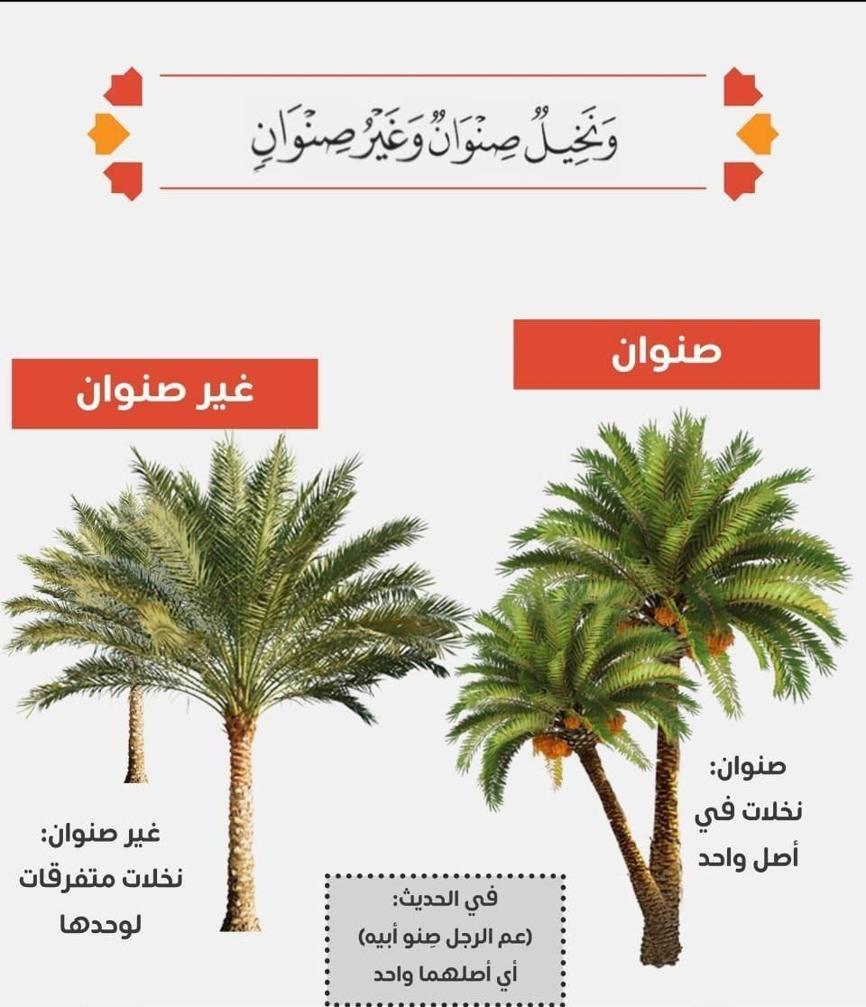 Pin By Hala Naser Eldin On Pin Learn Islam Islamic Messages Words Quotes