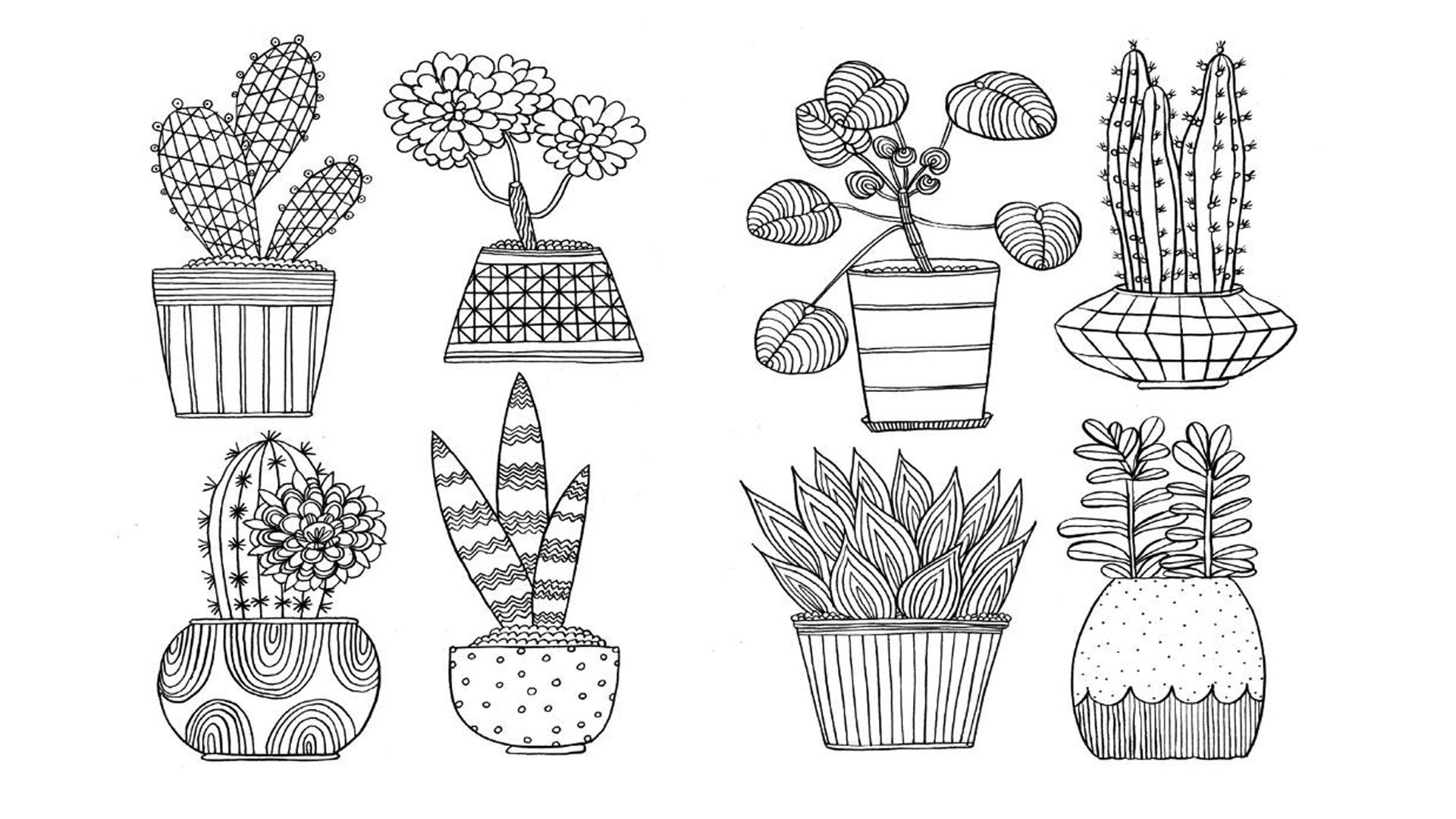 Colouring In For Grown Ups Mindfulness Colouring Botanical Line Drawing Coloring Pages