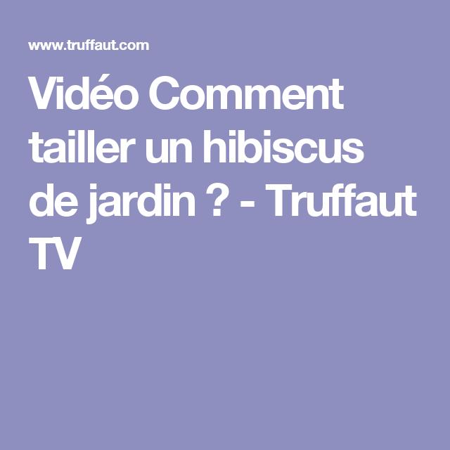 Vidéo Comment tailler un hibiscus de jardin ? - Truffaut TV ...