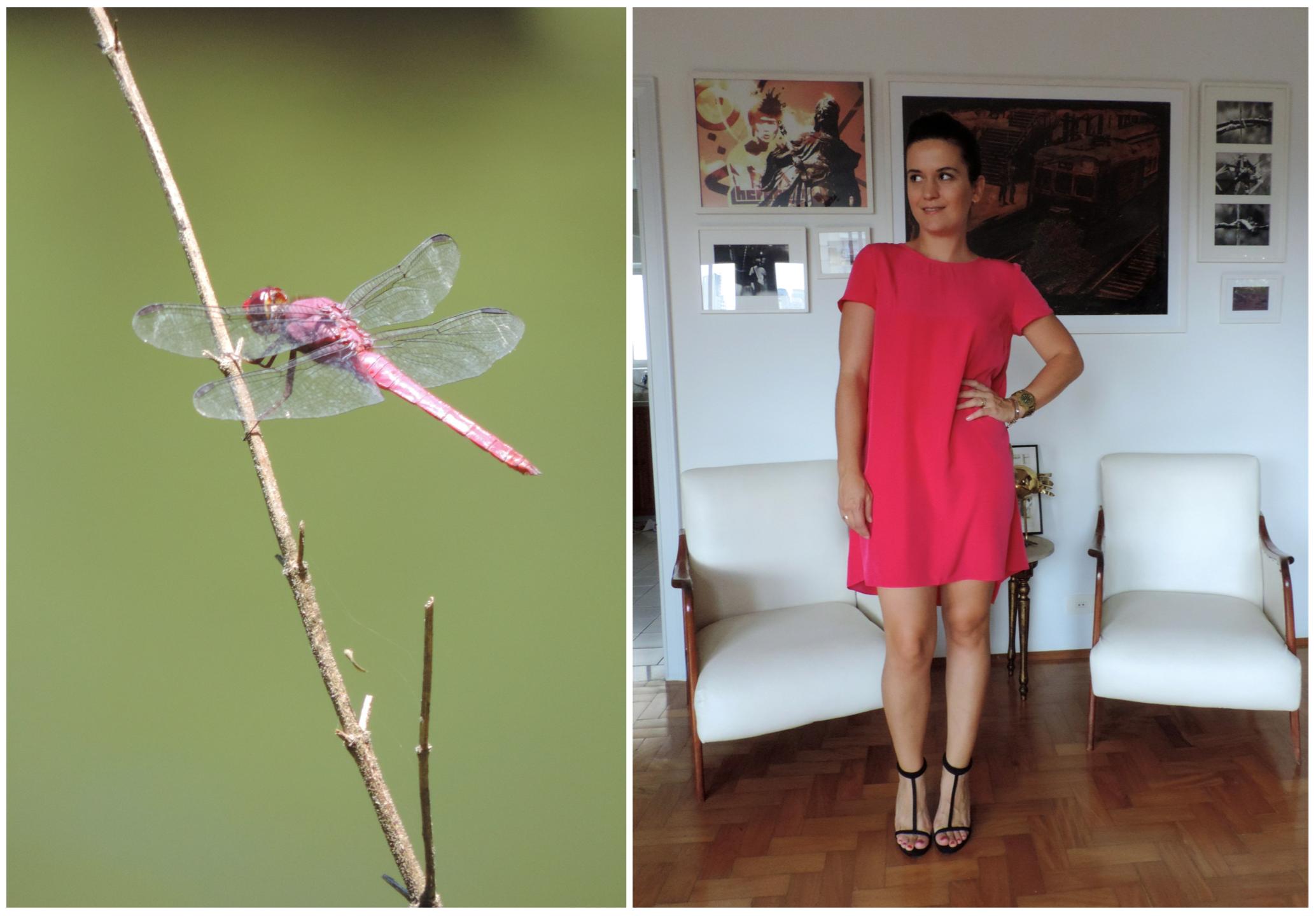 Bicho do Dia - Libélula #look #ootd #moda #fashion #cea #santalolla Link: http://www.bloganimalchic.com/2014/02/13/bichododia-libelula-cor-de-rosa/