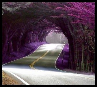 Image result for mystical path less traveled of love