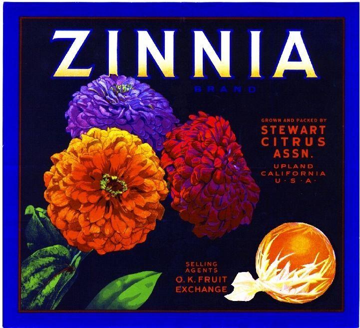 Upland San Bernardino County Zinnia Flowers Orange Fruit Crate Label Art Print
