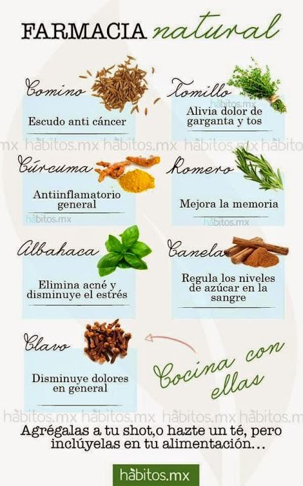 Farmacia natural las especias con las hierbas for Hierbas aromaticas y medicinales