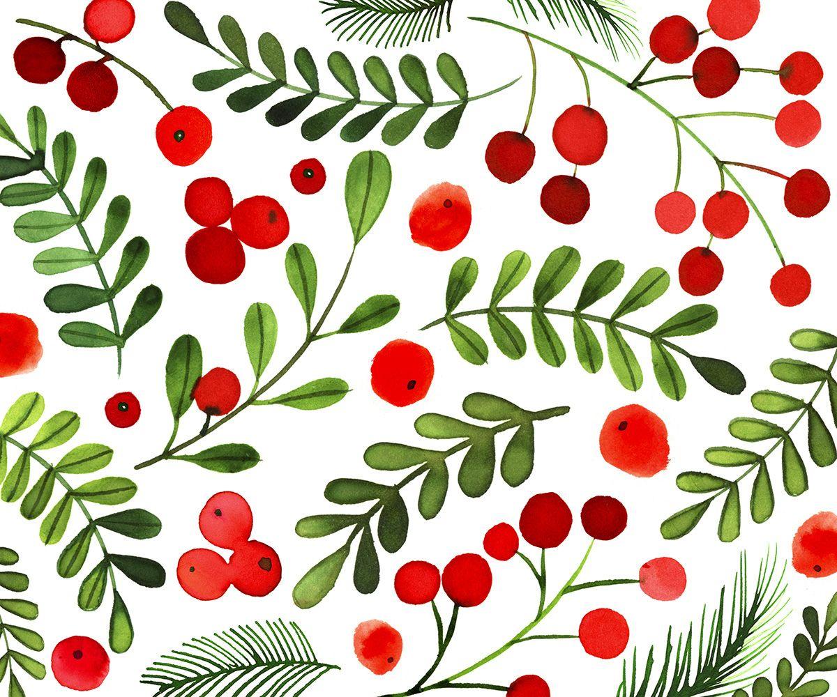 christmas berries by margaret