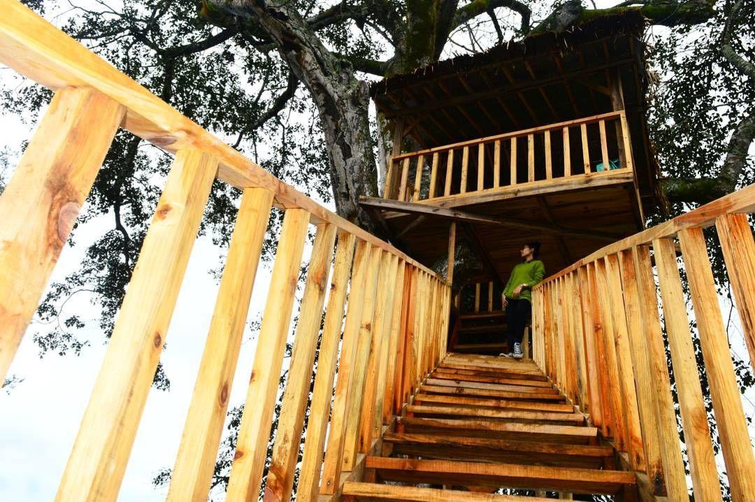 Wisata Wonogiri Destinasi Baru Rumah Pohon Wonoasri Seper Jatipurno Rumah Pohon Rumah Pohon
