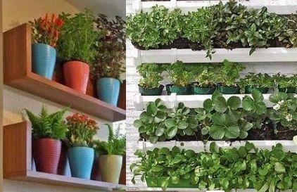 Horta em Apartamento Dicas de Como Fazer e Cuidar de uma horta em apartamento, como preparar substrato caseiros com folhas secas e terra Como fazer mudas