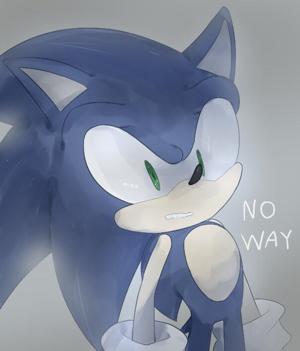Yeah Sonic, there is a new cat in town  | sonic | Sonic