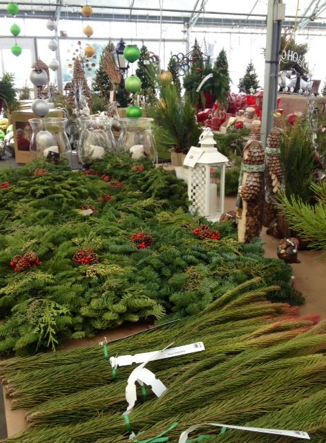 Find Real Minnesota Grown Christmas Trees From Abrahamson Nurseries In St Croix Falls Our Free Online Directory
