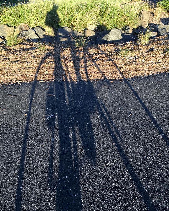 065 // girl on bike post boxing sesh in the park. Enjoying the late arvo autumn sun. #parkville #boxing #exercise #melbourne