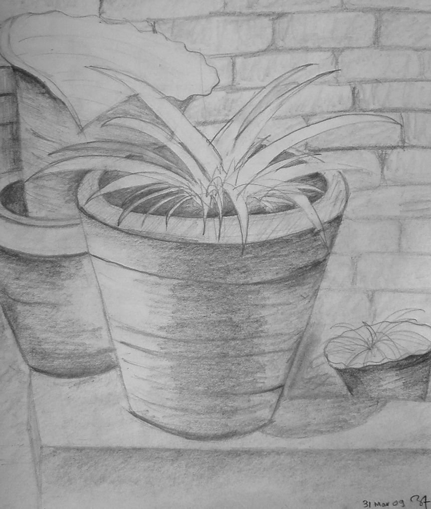 flower pot Flower pots, Pencil drawings, Drawings