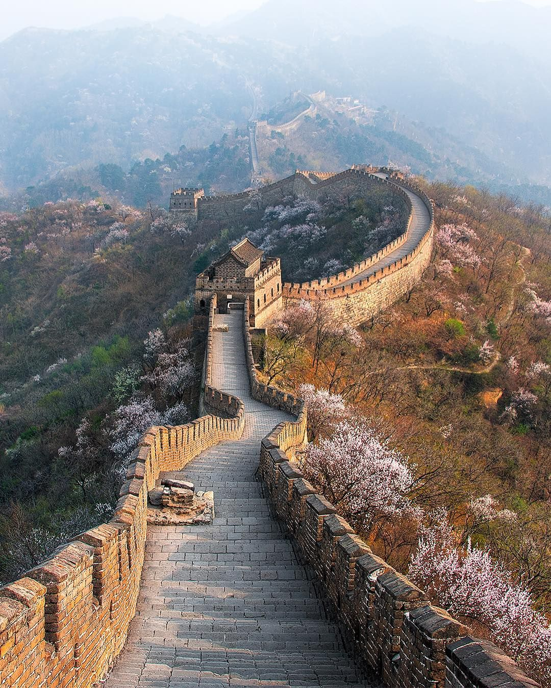 Elia Locardi On Instagram The Great Wall Of China As Beautiful Cherry Blossoms Bloom In A Hazy S Great Wall Of China Beautiful Destinations Purpose Of Travel