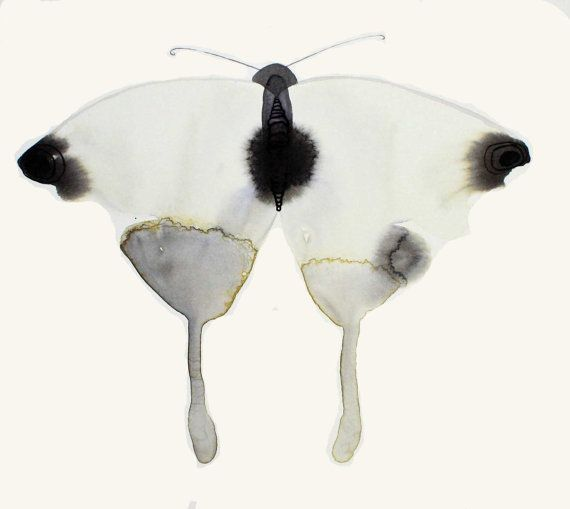 Black and White Ink and Watercolor Rorschach Butterfly Drawing