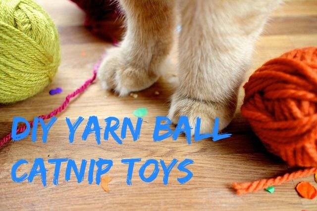 Homemade Cat Toy Diy Yarn Ball Catnip Toys Catnip Toys Homemade Cat Toys Diy Cat Toys