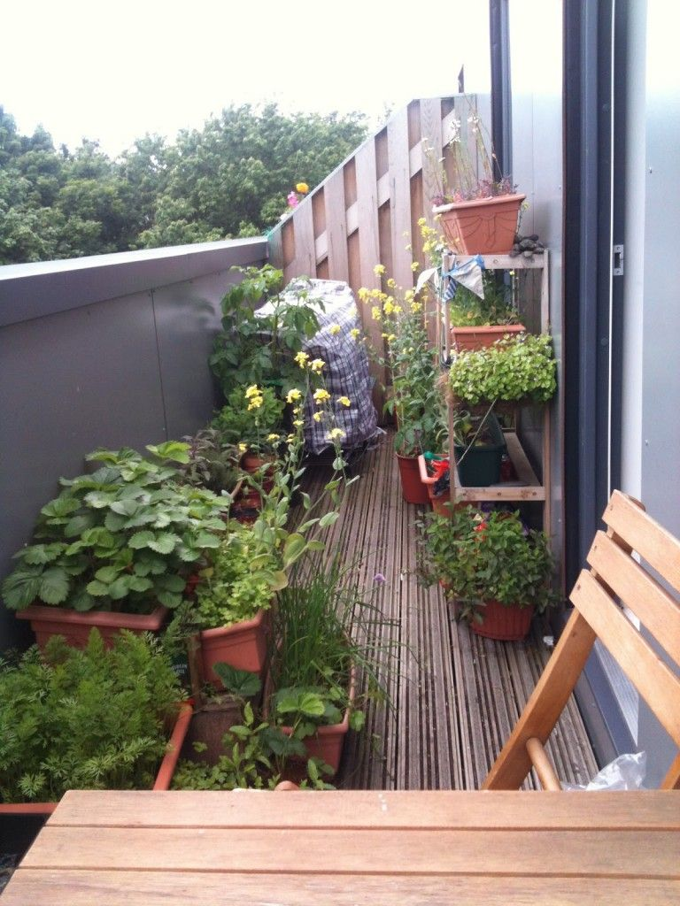 Balcony Vegetable Garden Design