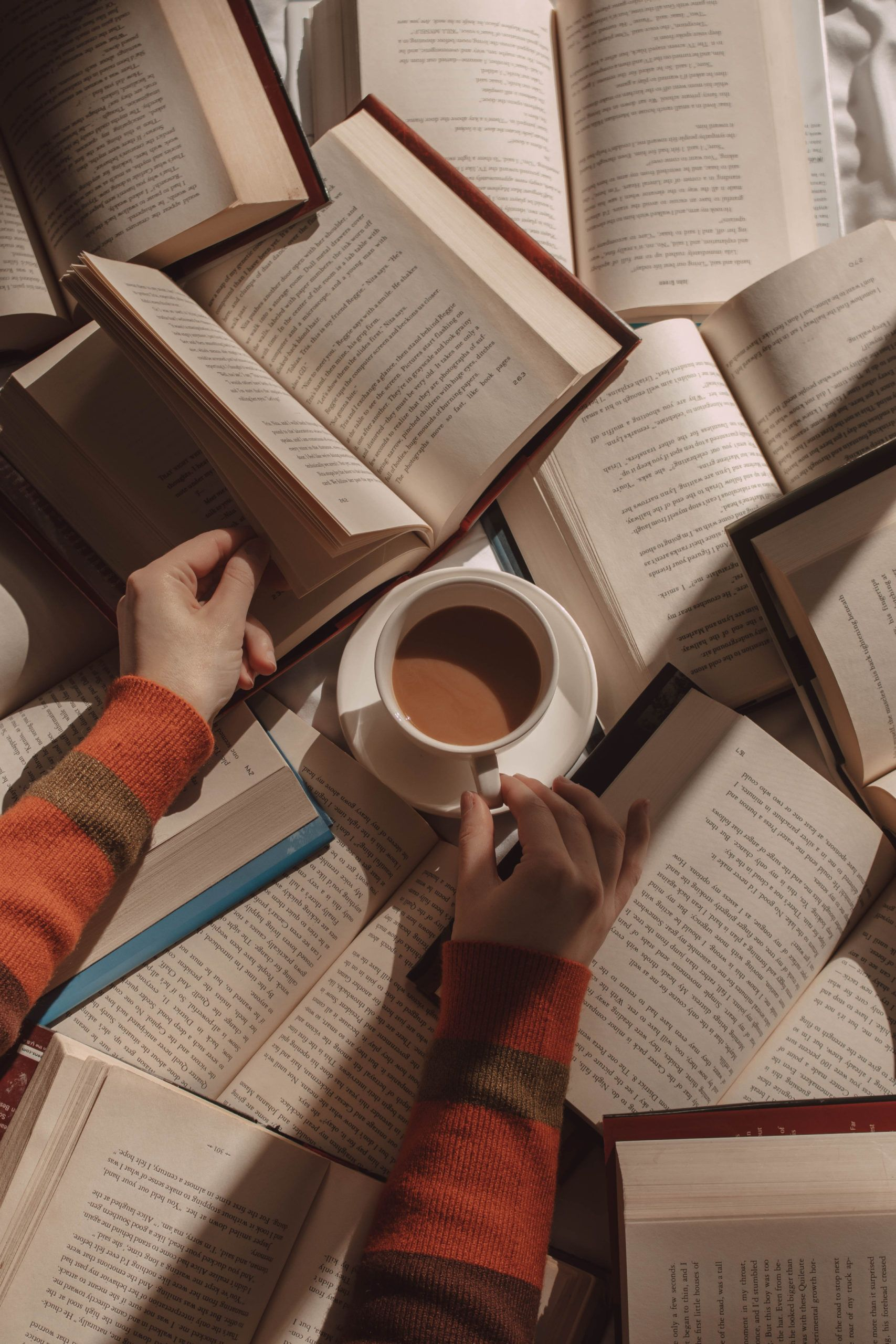 Reviews for the 10 Books I Read in January | She S